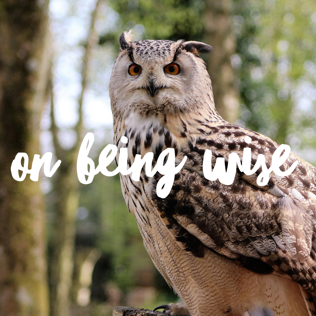 On Being Wise | Using Wisdom in Birth Work